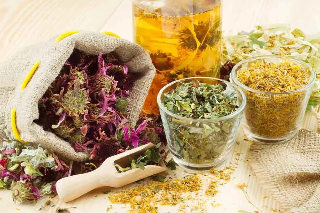 травяной сбор для облегчения болей в груди