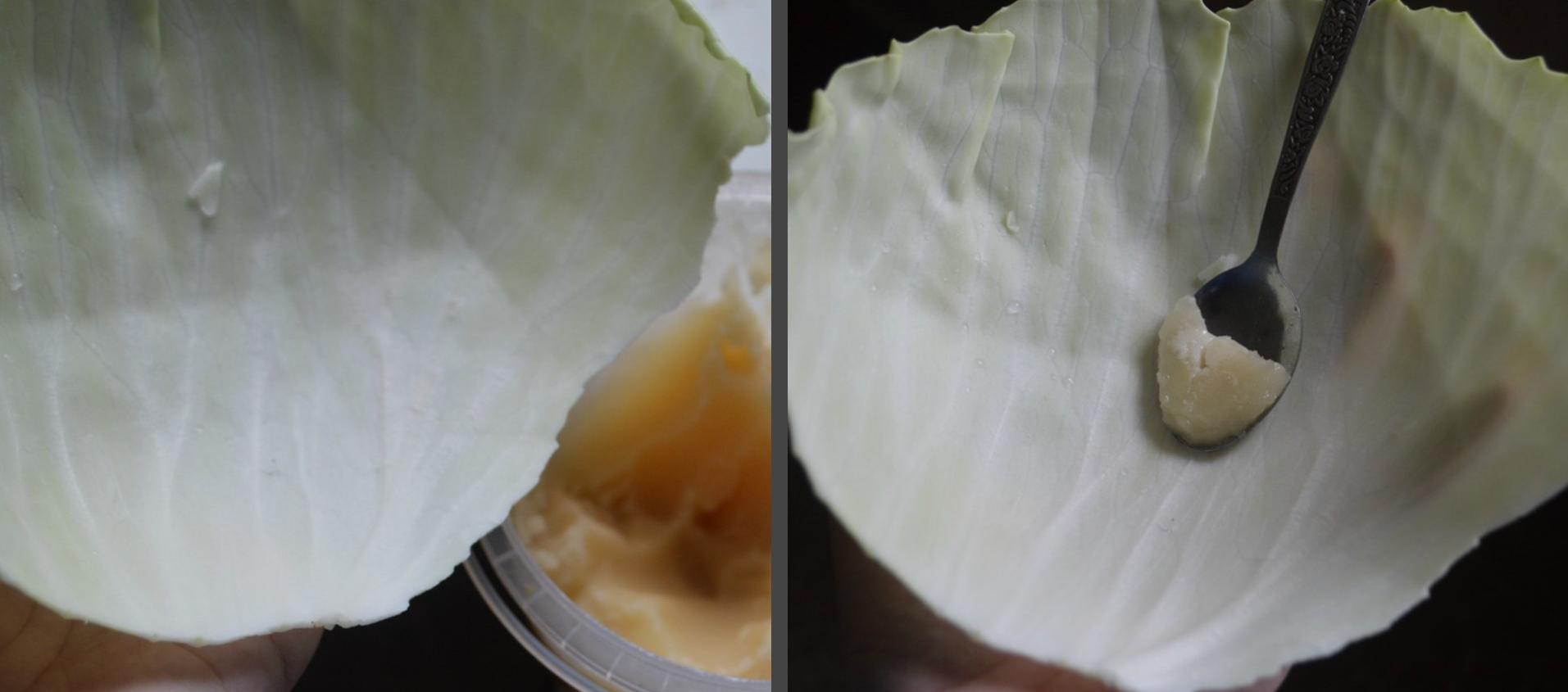 компресс из капусты с медом при мастите
