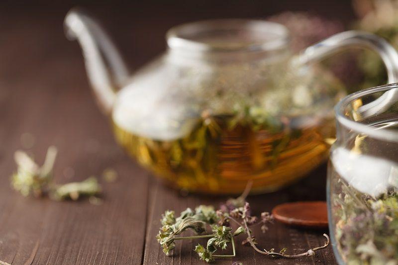 травяной настой от мастопатии в заварочном чайнике