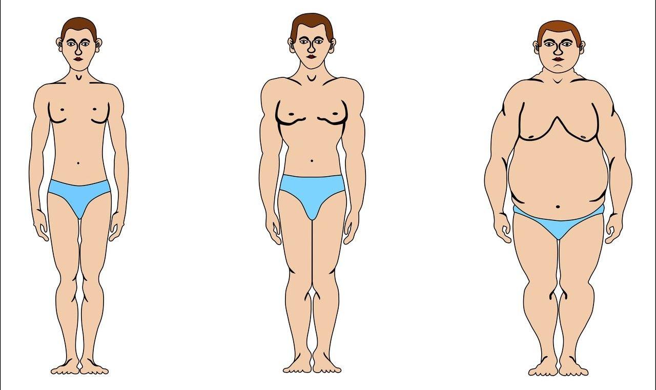 процесс ожирения у мужчин с женской грудью