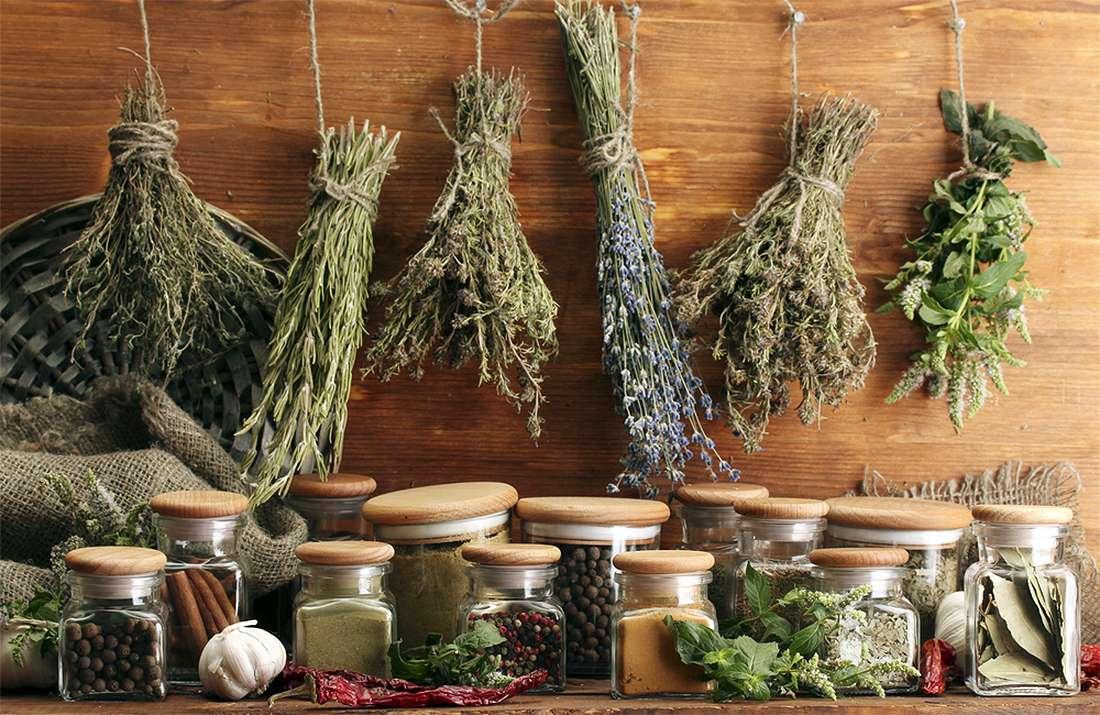Лечение рака груди народными средствами: полезные масла, травы