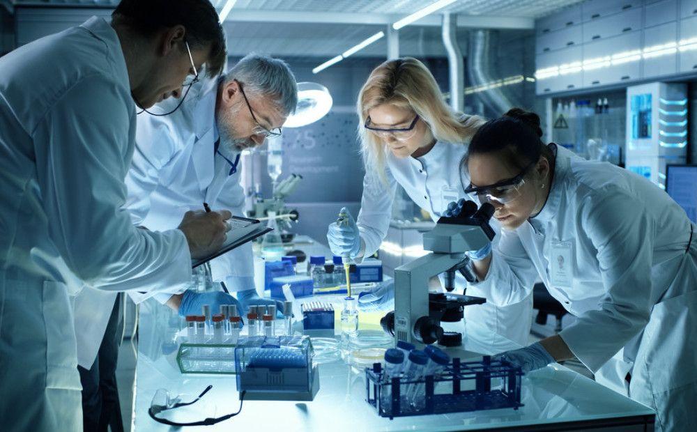 изучают в лабораории