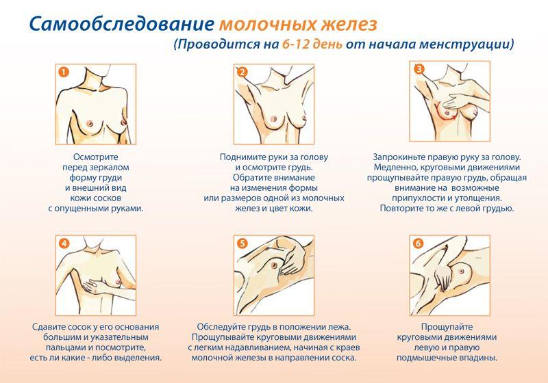 правила обследования груди в картинках