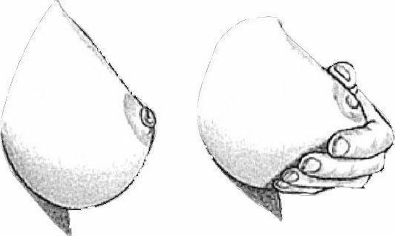 две груди с разными сосками