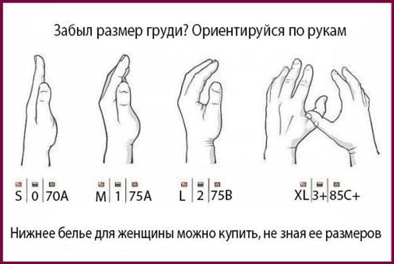 методики определения размеров бюста