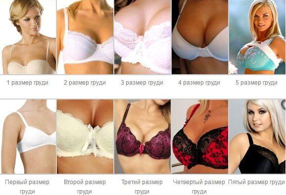 падал буквально сравнительные фото женской груди предлагаемой категории